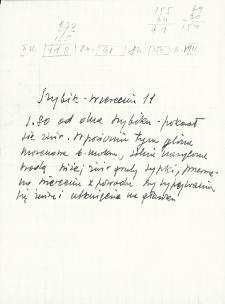 Notatki polowe dotyczące wierceń w Rumlówce