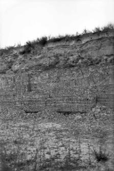 Żydowszczyzna koło Grodna : profil odsłonięcia na stoku tarasu