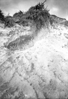 Mochty : taras pradoliny Wisły