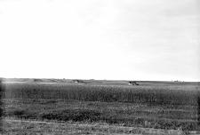 """Nowy Tyczyn, powiat Trembowla (Podole) : step """"Pantalicha"""""""