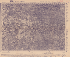Reihe XXII. Blatt 6. Nowogad Wolynßk : Gouvernement Wolynien