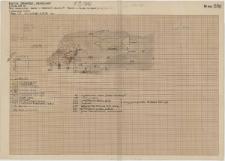 KZG, VI 401 D, profil archeologiczny W świadka z prezbiterium kościoła A (kościół A i kolegiata)