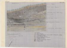 KZG, I 700 D, profil archeologiczny S wykopu