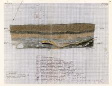 KZG, I 498 B, 499 C, profil archeologiczny E wykopu