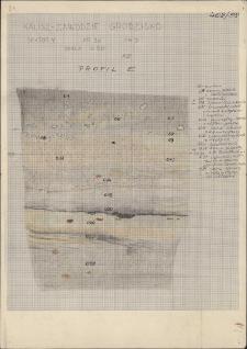 KZG, V 20 D, profil archeologiczny E wykopu