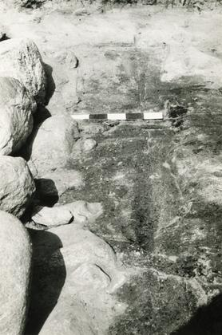 Grave 1-89, contour of the burial cut, visible apse wall foundation stones