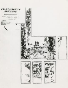 Tower foundation wall and grave 4-59, burial cut (summary drawing)
