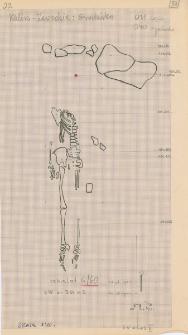 KZG, VI 301 C, plan archeologiczny wykopu, cmentarz (grób 6/60)