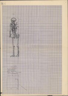 KZG, V 25 B, plan archeologiczny wykopu, cmentarz (grób 7/62)