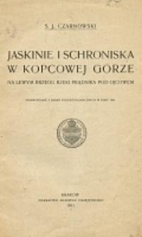 Jaskinie i schroniska w Kopcowej Górze na lewym brzeku rzeki Prądnika pod Ojcowem : sprawozdanie z badań poleoetnologicznych w roku 1899