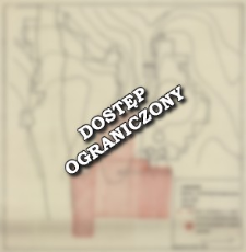 Luboszyce. Badania archeologiczno-geofizyczne