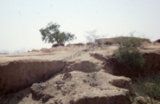 Muslim cemetery in Rajasthan (Iconographic document)