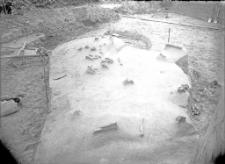Stanowisko Horodok II : rozkopywania 1926 : skupisko kości