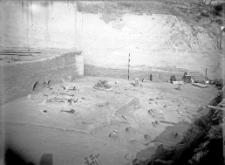 Stanowisko Horodok II : widok na miejsce rozkopywań 1926