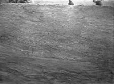 Stanowisko Horodok II : profil ściany, sondaż I od poziomu
