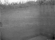 Stanowisko Horodok VII : profil ściany wykopu (zachodniej)