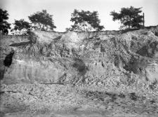 Zakrzów koło Krakowa : piaskownia na krawędzi tarasu akumulacyjnego Prawisły