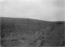 """Gródek : osada wczesnohistoryczna """"nad Rudnikiem"""" w Gródku : widok na miejsce próbnych rozkopywań w 1925 roku"""