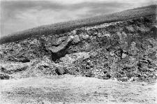 Huszczka Wielka, powiat Zamość : odsłonięcie na krańcu wschodnim profilu