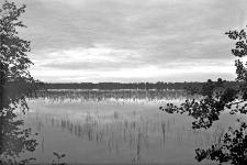 Jezioro Świteź - Nowogródzkie : wczesny ranek