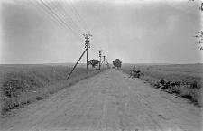 Chełm : droga na południe od miasta
