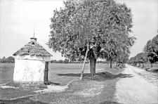 Uście Zielone nad Dniestrem : kaplica przydrożna koło miasteczka