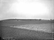 """Kolonia Marianówka, pow. Równe : wzgórze """"Kamieniczka"""" od strony południowej"""