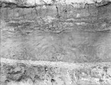 Nehrybka, powiat Przemyśl : profil ściany wykopu