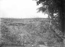 Wieś Olchówka nad Horyńcem (Polesie) : odkrywka w tarasie fluwioglacjalno-lessowej