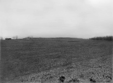 Nowe Koszary (Polesie) : pagórek moreny czołowej pod wsią na W [zachód] od Kowla