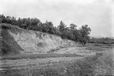 Wieś Podbereźce (koło Lwowa) : widok na odsłonięcie lessu
