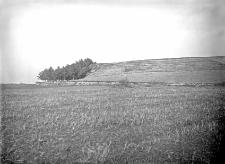 Wieś Karajewicze, powiat równieński : profil wysokiego brzegu w punkcie styku pradolin Uścia i Horynia