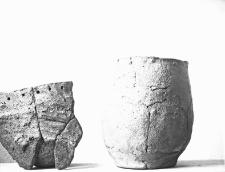 Miejscowość nieznana : fragmenty naczynia