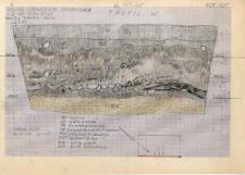 KZG, V 4 A, profil archeologiczny W