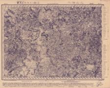 Reihe X. Blatt 8. Njewjel : Gouvernement Witebßk u. Pskow