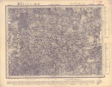 Reihe VII. Blatt 8. Porchow : Gouvernement Pßkow u. Nowogrod