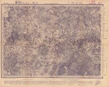 Reihe VII. Blatt 6. Pjetschory : Gouvernement Livland, Pßkow und Witebsk