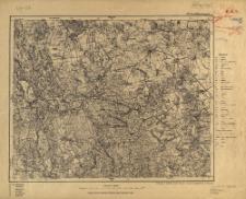 299. Trzciel (Tirschtiegel.) : podziałka 1:100.000