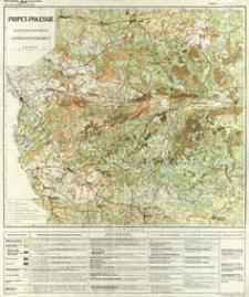 Pripet-Polessje : Militärgeographische Operationskarte : Maßstab 1:500 000