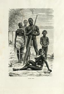 Voyages dans l'Amérique du Sud