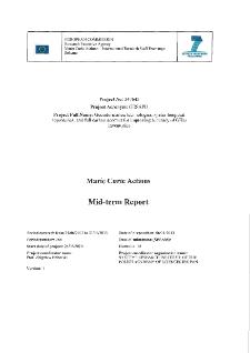 IRSES Mid-Term Report 2