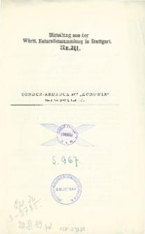 Die Ausbeute der Deutschen Chaco-Expedition 1925/26 : Hymenoptera. I Vespidae (Vespinae et Eumenidinae)