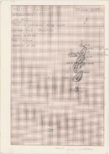 KZG, VI 702 C, plan archeologiczny wykopu, konstrukcje drewniane