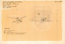 KZG, VI 301 D, profil archeologiczny N i plan wykopu