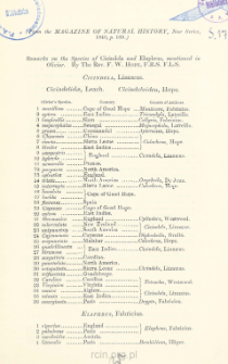 Remarks on the Species of Cicindela and Elaphrus, mentioned in Olivier