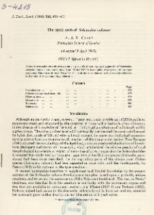 The hyoid arch of Solenodon cubanus