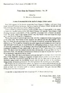 A case of osteomyelitis in the skull of a badger (Meles meles)