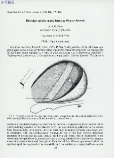 Bilocular epipharyngeal bursa in Diceros bicornis