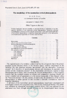 The morphology of the mammalian cervical pleurapophysis
