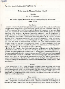The diural flight of the Azorean bat (Nyctalus azoreum) and the avifauna of the Aores